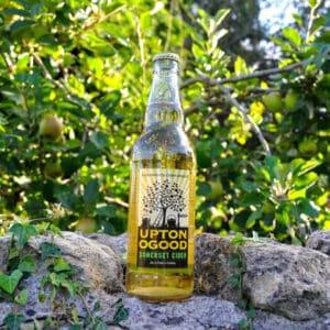 UptoNoGood Somerset Cider